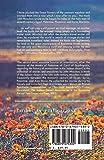 The Spiritual Meadow: By John Moschos