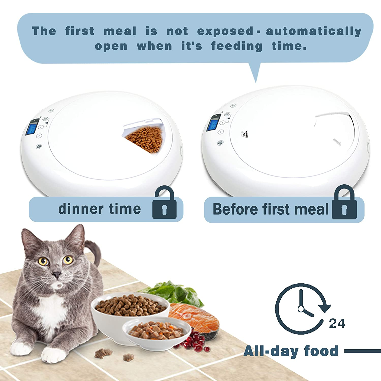 Amazon.com : Athorbot Automatic Pet Feeder for Medium Small ...