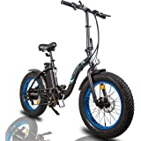 "ECOTRIC Powerful 500W Electric Bicycle 20"" Fat Tire Alloy Frame 36V/12.5AH Lithium Battery Ebike Rear Motor LED Display"