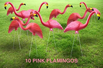 Amazoncom Garden Plast Pink Flamingos 10 Pack Outdoor