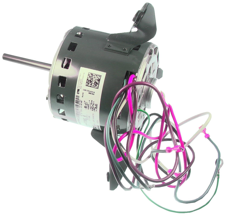 Amazon.com: Goodman B13400-20 Motor: Home Improvet