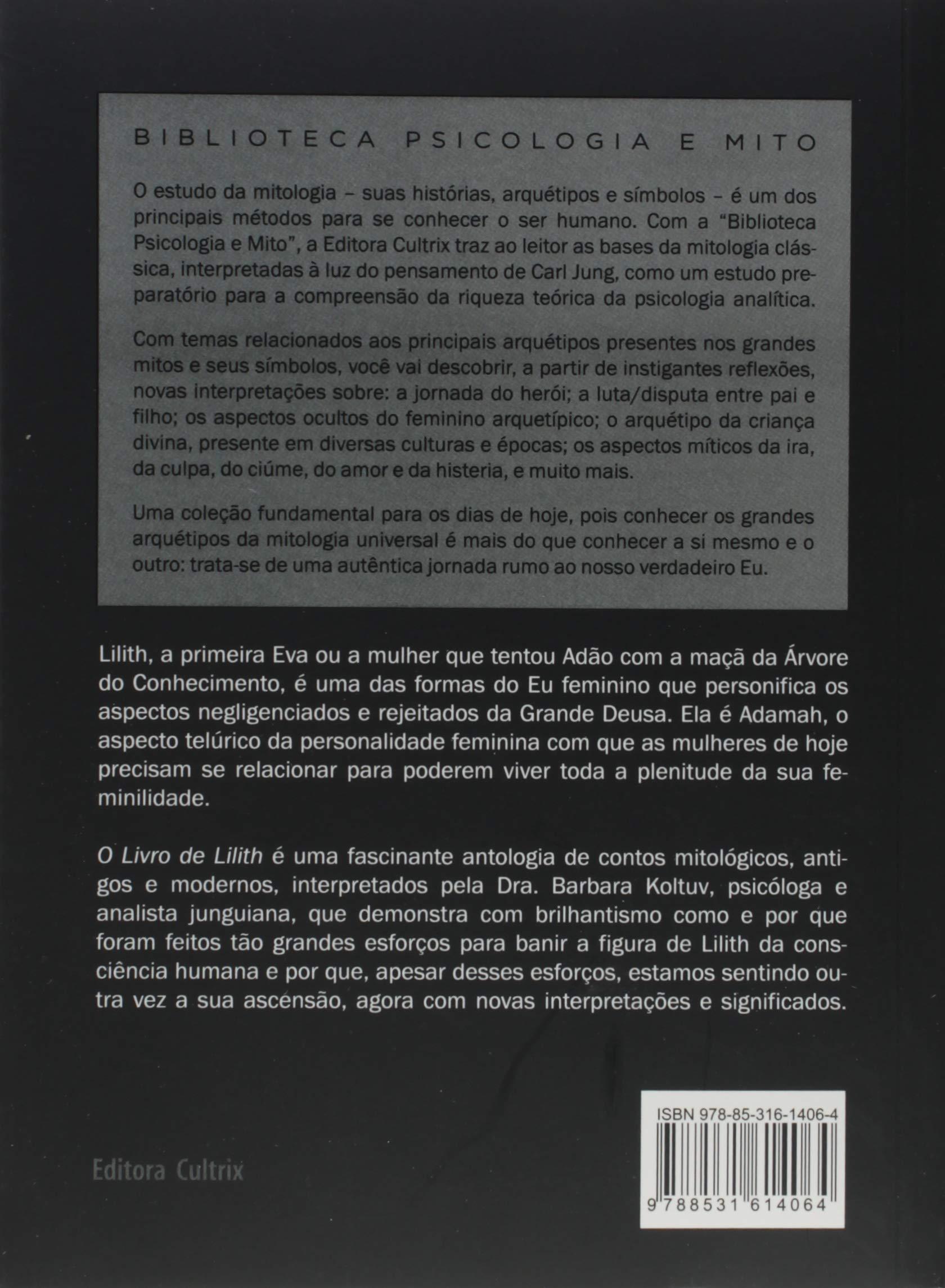 06a76dee0ef1 O livro de Lilith: o Resgate do Lado Sombrio do Feminino Universal -  9788531614064 - Livros na Amazon Brasil