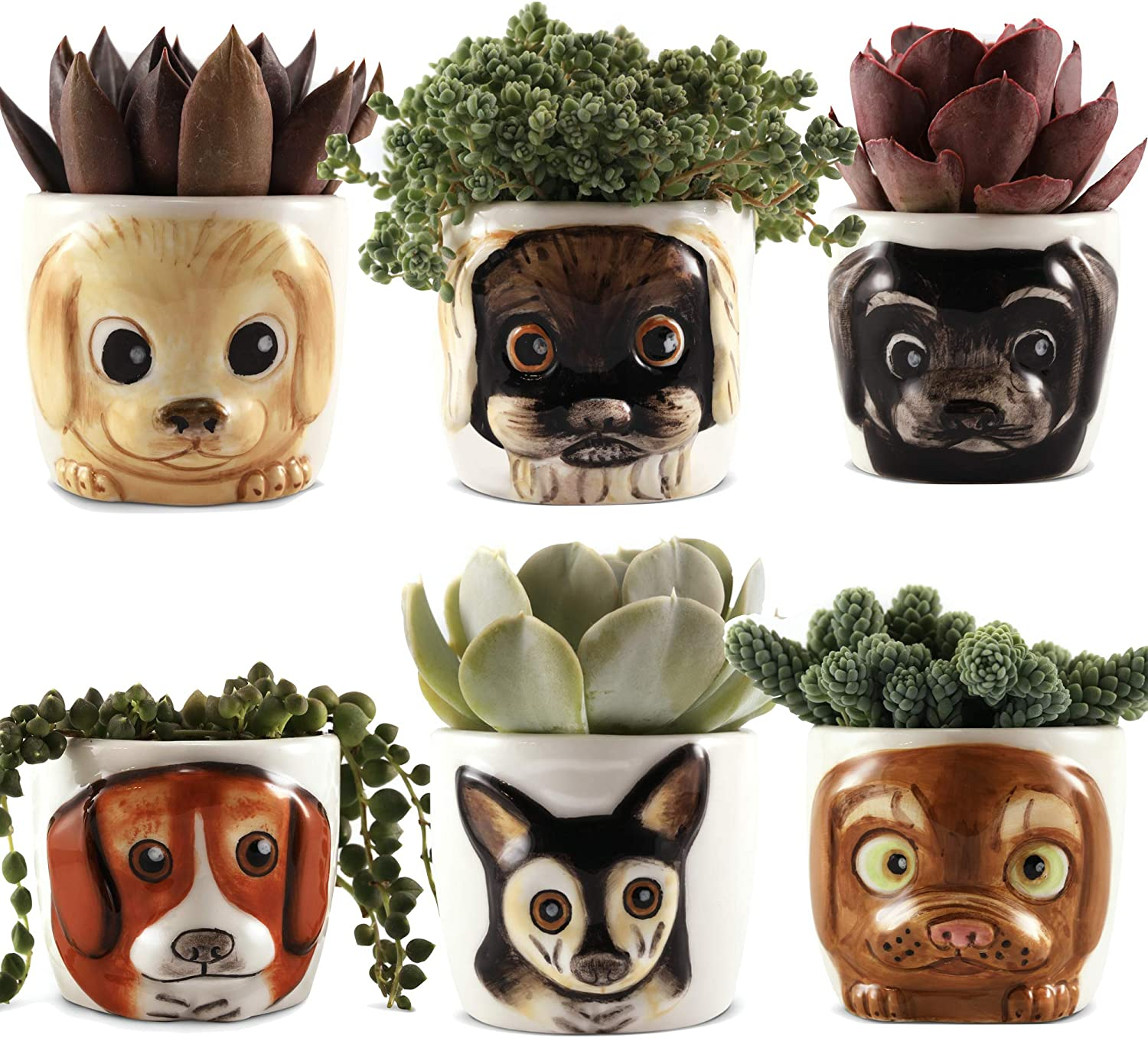 Window Garden Animal Planters - Small Succulent Puppy Pot Set of Six. Cute Decoration for Home Decor, Office Desk or Kitchen Windowsill. Dog Lover Dream Gift. for Women, Adults, Kids Moms Dad.