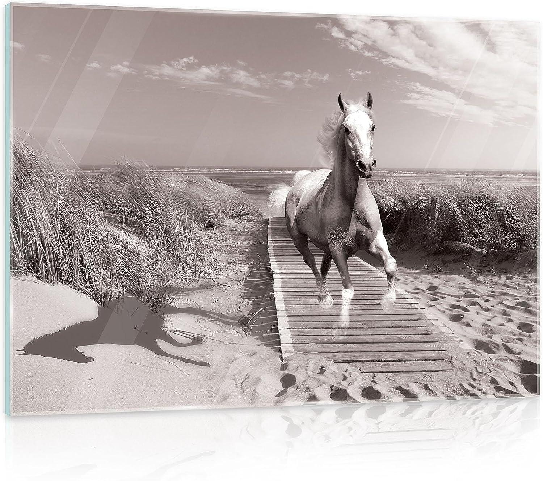 FORWALL - Cuadro de cristal para pared con imagen de caballo en la galope en la playa, con imagen de paisaje natural AMF10229_GT, mar mar, océano, vidrio, beige, G3 (60cm. x 40cm.)