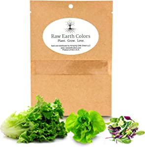 Lettuce Mix Seeds for Planting Home Garden Outdoors or Indoors - Variety Pack of Romain - Butter - Gourmet Leaf Salad Blend Lettuce Combo Pack.