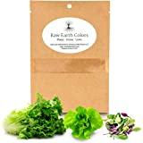 Lettuce Mix Seeds for Planting Home Garden Outdoors or Indoors - Variety Pack of Romain - Butter - Gourmet Leaf Salad…