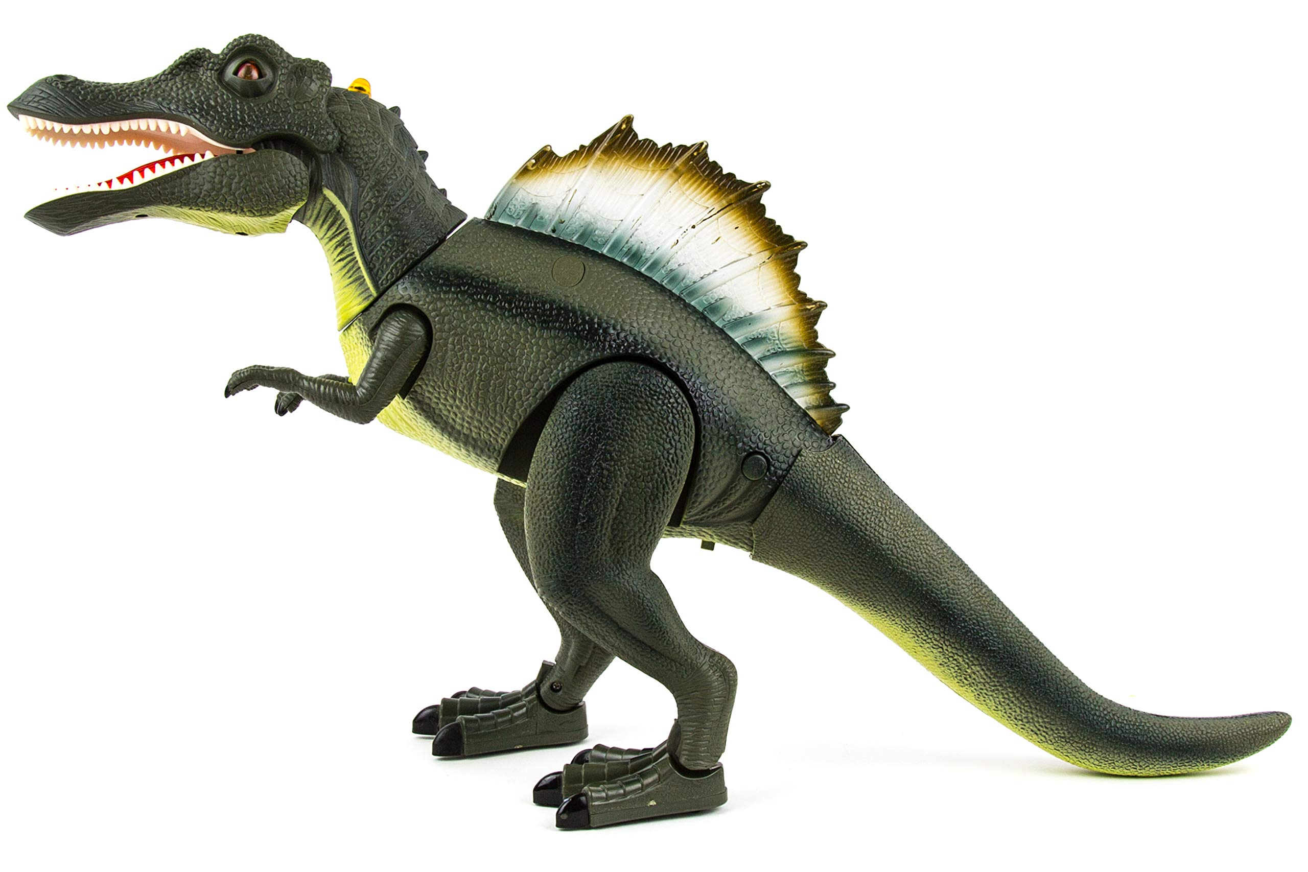 Toysery Remote Control Dinosaur Toy for Kids | RC Walking Realistic Dinosaur | Toy Roars, Lights & Sounds | Fast Forward Function | Ultimate Fun for Kids by Toysery (Image #4)