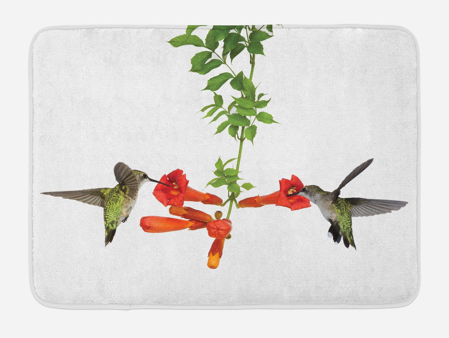 Ambesonne Hummingbirds Bath Mat, Two Hummingbirds Sipping Nectar from a Trumpet Vine Blossoms Summertime, Plush Bathroom Decor Mat with Non Slip Backing, 29.5 W X 17.5 W Inches, Red Black Green