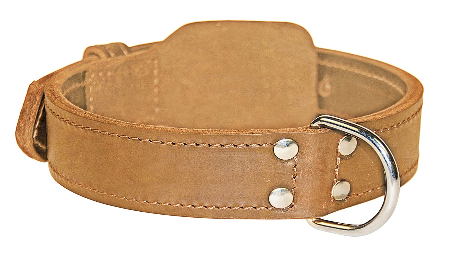 Dean and Tyler Simplicity , Leather Dog Collar with Chrome Plated Steel Hardware Tan Size 24  by 1-3 4  Fits Neck 22  to 26