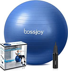 Phyllia Exercise Ball 65cm Fitness Ball Anti-Burst Extra Thick Stability Yoga Ball with Pump for Home, Gym, Birthing,Core Strength Training,Physical Therapy