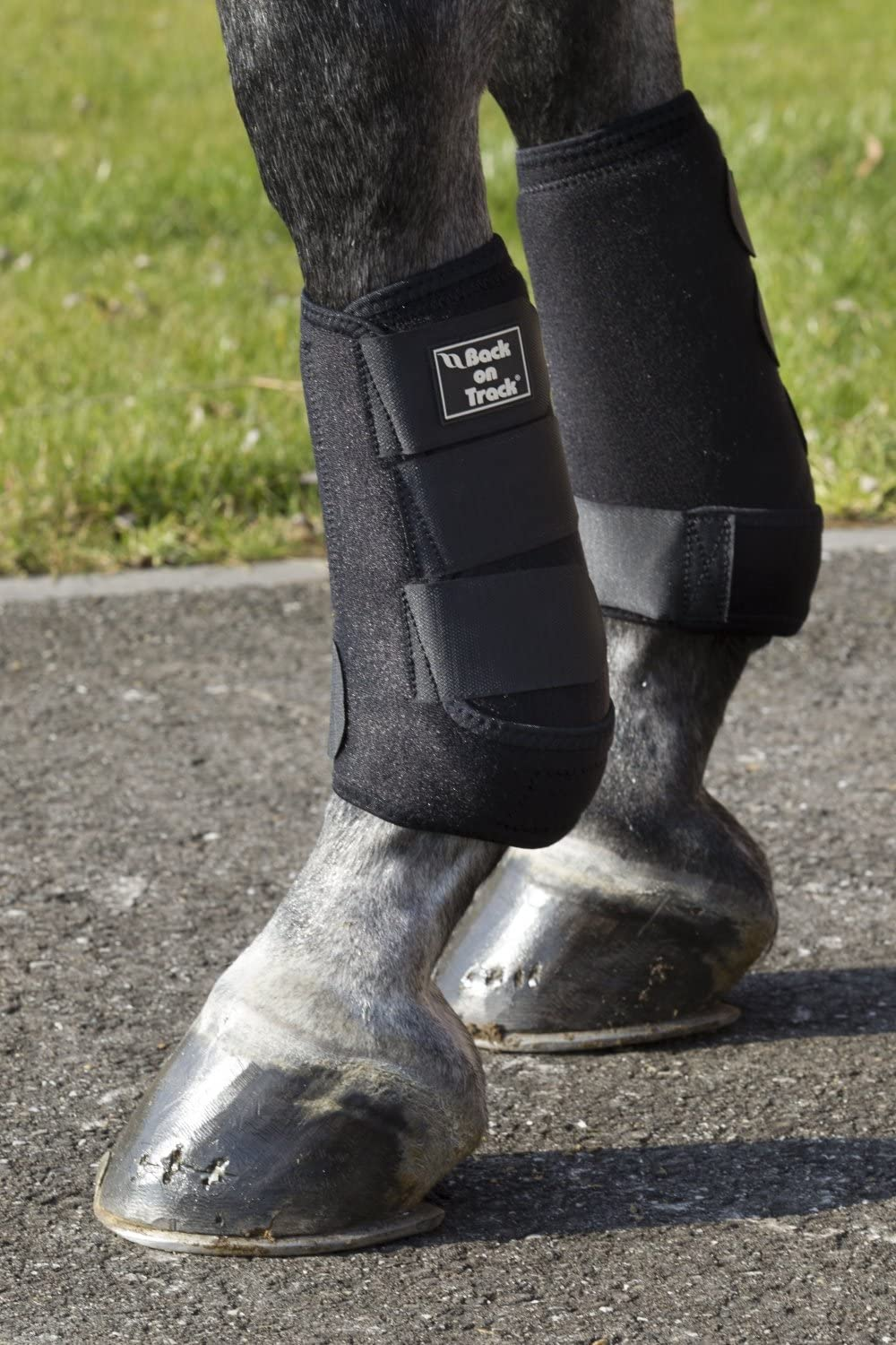 Back on Track Supreme Exercise Boots with Shock Arbeitsgamaschen