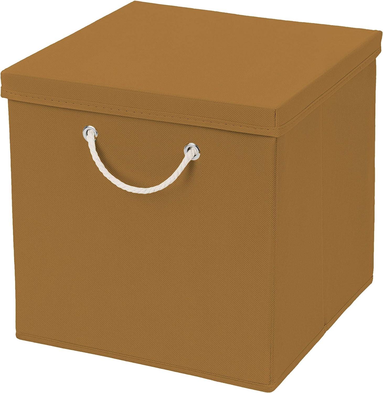 Caja de almacenaje, 30 x 30 x 30 cm, con tapa, coñac, 2 unidades: Amazon.es: Hogar