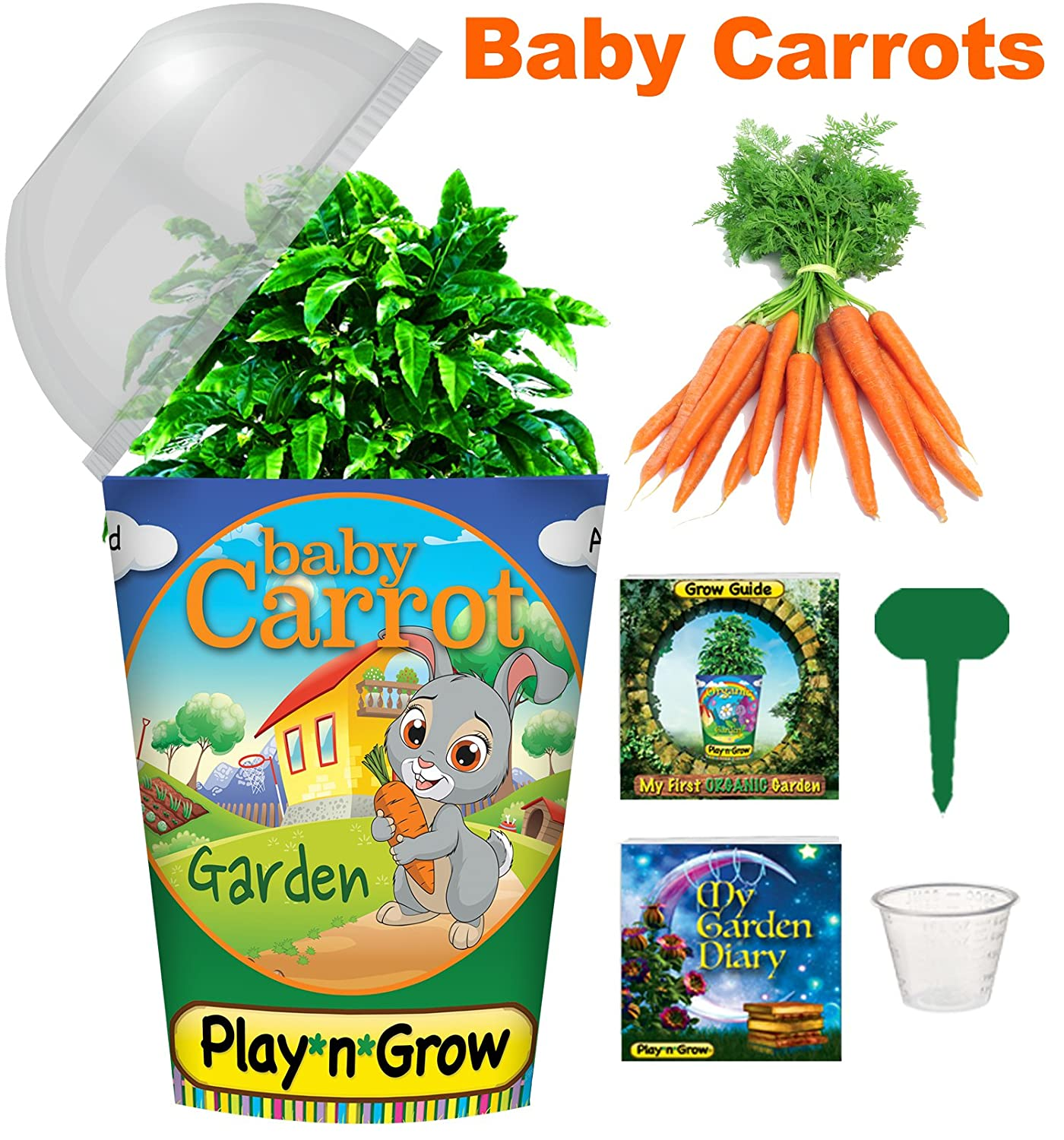 Amazon Com Children S Organic Plant Kit Baby Carrot Window