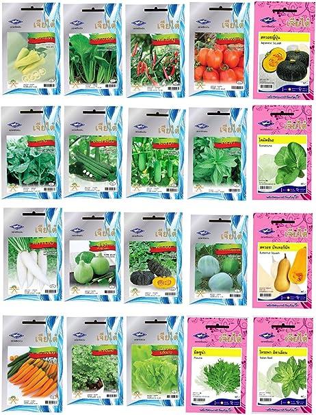 Amazon.com: Chia Semillas de hortalizas de Tai de 20 tipos ...