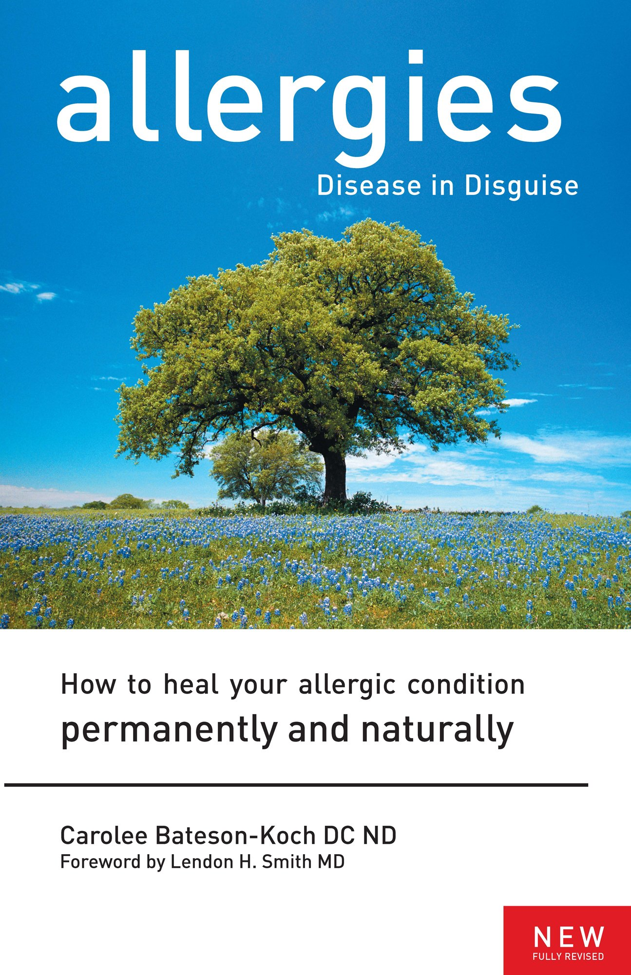 Allergies Disguise Condition Permanently Naturally product image