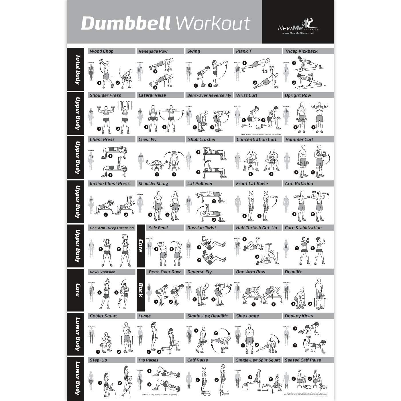 NewMe Fitness Dumbbell Workout Exercise Poster - Now Laminated - Strength  Training Chart - Build Muscle, Tone & Tighten - Home Gym Weight Lifting