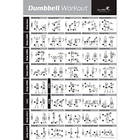 fd2ca09bdb7 NewMe Fitness Dumbbell Workout Exercise Poster - Now Laminated - Strength Training  Chart - Build Muscle