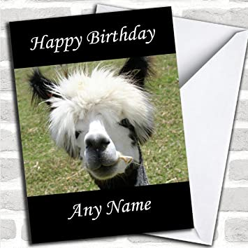Funny Alpaca Customised Birthday Greetings Card Cards Animals Wildlife Pets Amazoncouk Office Products