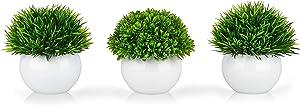 ELYSIANZE Mini Artificial Plants | Modern Farmhouse Plants Home Decor | Small Fake Plants | Office/Kitchen/Bathroom/Bedroom/Mantle/Shelf/Living Room/Table Decoration Faux Plant Set