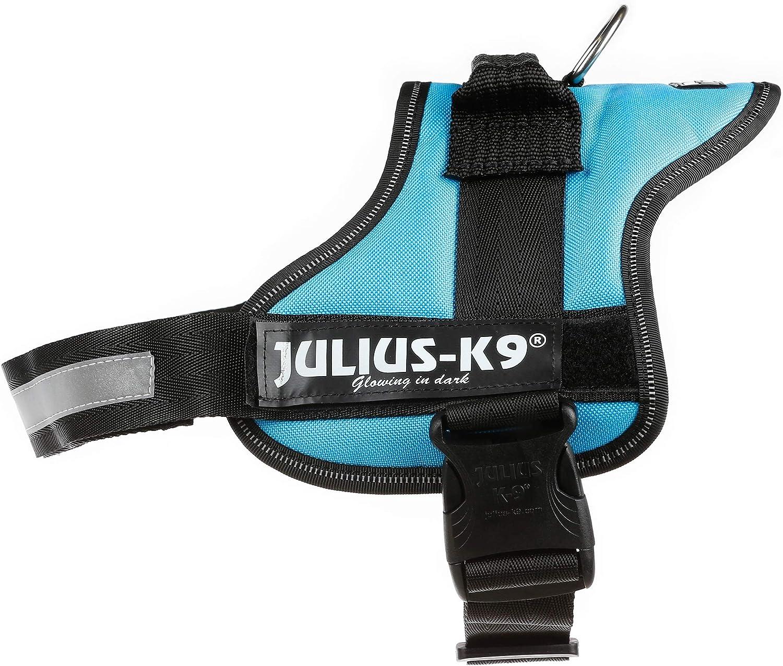 Trixie - Arnés de fuerza modelo Julius-K9 Baby 1 (XS): Amazon.es ...
