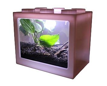 Amazon Com Aquatichi Nano Tank Extra Small Mini Desktop Aquarium