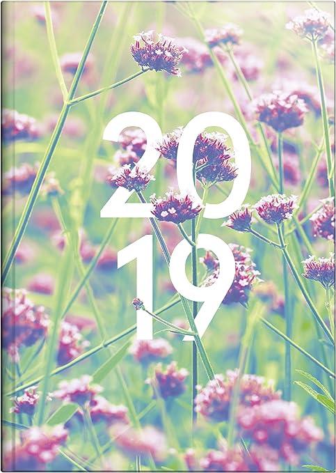 Brunnen 107951501 Buchkalender Modell 795, 1 Seite = 1 Tag, 145 x 206 mm, Grafik-Einband Summertime, Kalendarium  2019