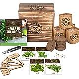 Indoor Herb Garden Starter Kit - Heirloom, Non-GMO Herb Seeds - Basil Thyme Parsley Cilantro Seed, Potting Soil, Pots, Scisso