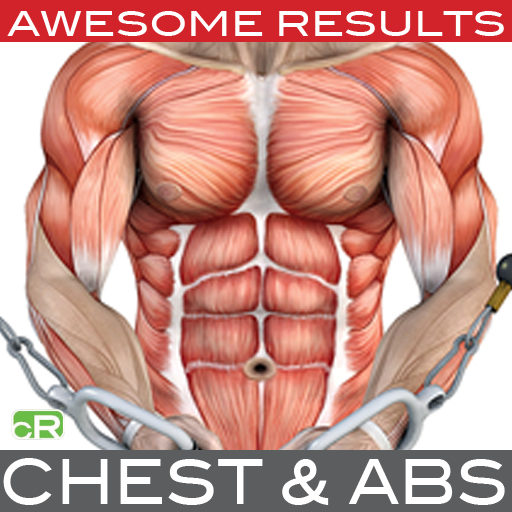 Amazon.com: Chest & Abs: Muscle Building with Craig Ramsay: Appstore ...
