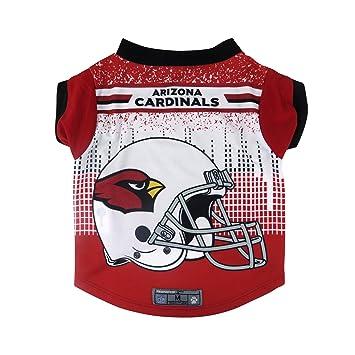 NFL Arizona Cardinals mascota rendimiento camiseta, grande: Amazon.es: Deportes y aire libre