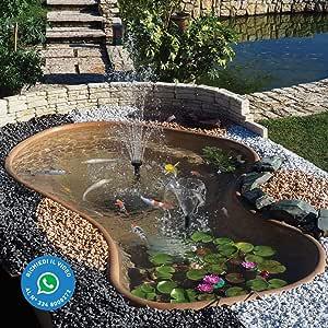 Estanque Koi Laguna para Carpe, peces, plantas: Amazon.es: Jardín
