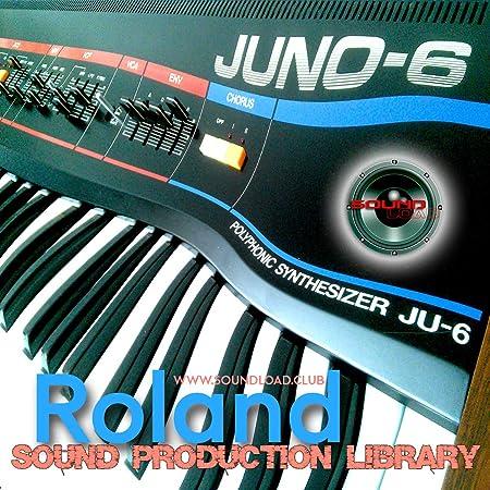 De Roland Juno-6 – Biblioteca de muestras de estudio Onda ...