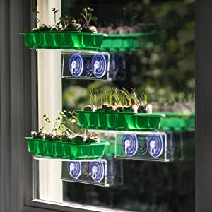 Window Garden Veg Ledge Shelf 10 Cavity Seed Starting Kit Bundle - Grow Seedlings on an Indoor Window and Plant Soil Pods in The Garden or Planter Pots. For Planting Vegetables, Herbs and Flower Seeds