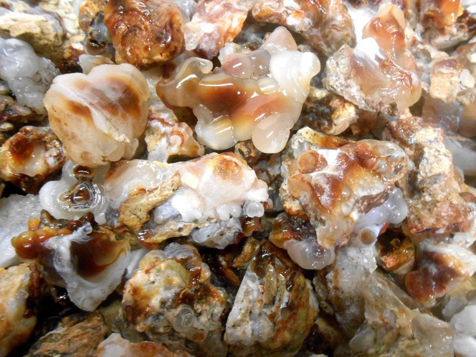Rock Tumbler Gem Refill Kit Mixed ''Fire'' Agate Rough From The Mines of Calvillo,(Aguascalientes) Mexico, Deer Creek & Slaughter Mt. Arizona. 8 oz by Unknown (Image #2)