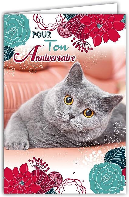 Afie 67 1115 Carte Pour Ton Anniversaire Chat Gris Doux Fleurs Bleues Rouges Roses Fabrique En France Amazon Fr Fournitures De Bureau