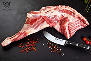 DALSTRONG Gladiator Series Skinning Knife