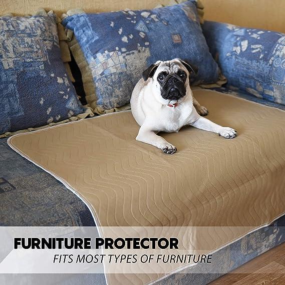 Amazon.com: Melliwish – Almohadillas lavables para perros, 2 ...