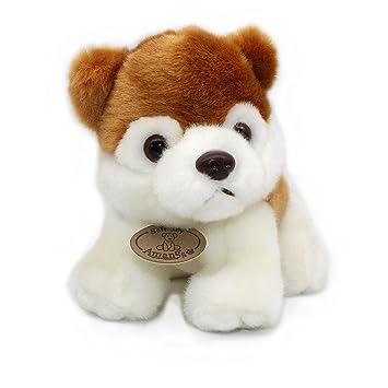 Amazon Com Siberian Husky Plush Puppies Stuffed Animals Dogs Soft