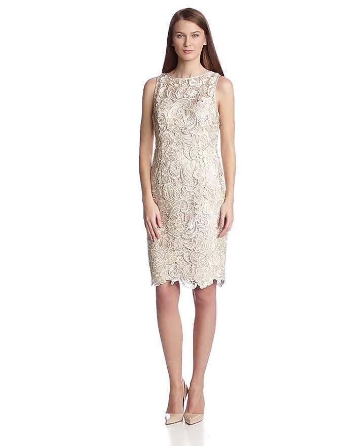 Amazon.com: Adrianna Papell Women\'s Illusion Neckline Lace Dress ...