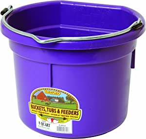 Little Giant Plastic Animal Feed Bucket (Purple) Flat Back Plastic Feed Bucket with Metal Handle (8 Quarts / 2 Gallons) (Item No. P8FBPURPLE)