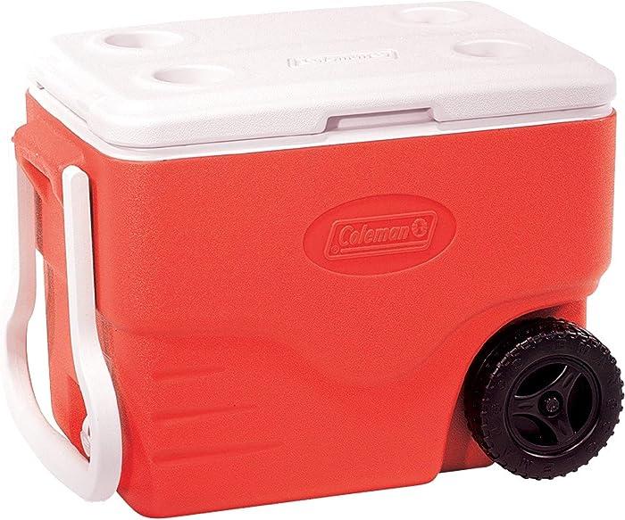 Top 10 Red Food Cooler
