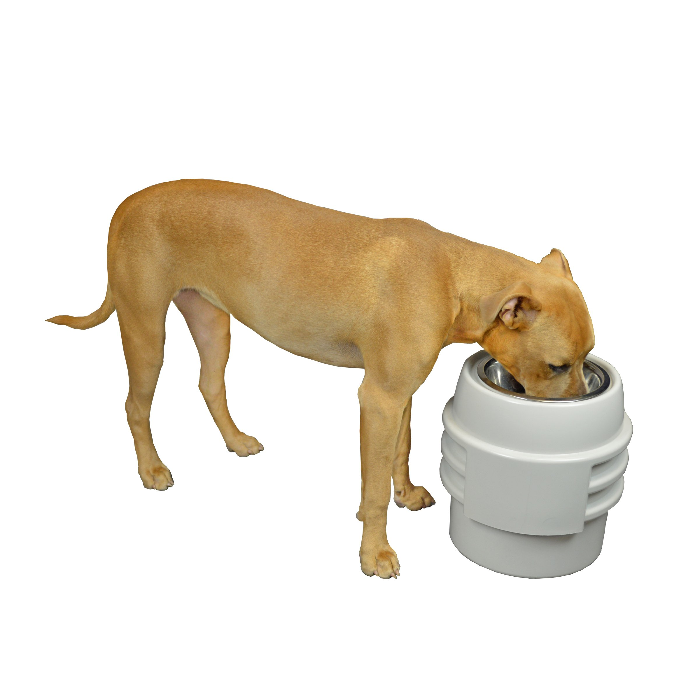 Our Pets Store-N- Feed Adjustable Raised Dog Bowl Feeder & Food Storage