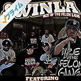 Rize Of The Felon Gang [Explicit]