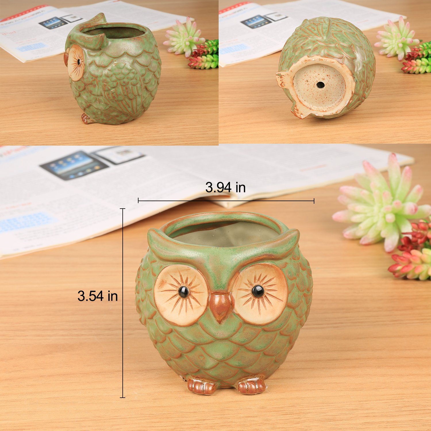 ROSE CREATE 3pcs 3in / 4in / 4.5in Owl Flower Pots by ROSE CREATE (Image #3)
