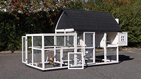 JoyPet.eu Chicken Coop Kathedraal XL - Cachorro de Pollo con Base ...