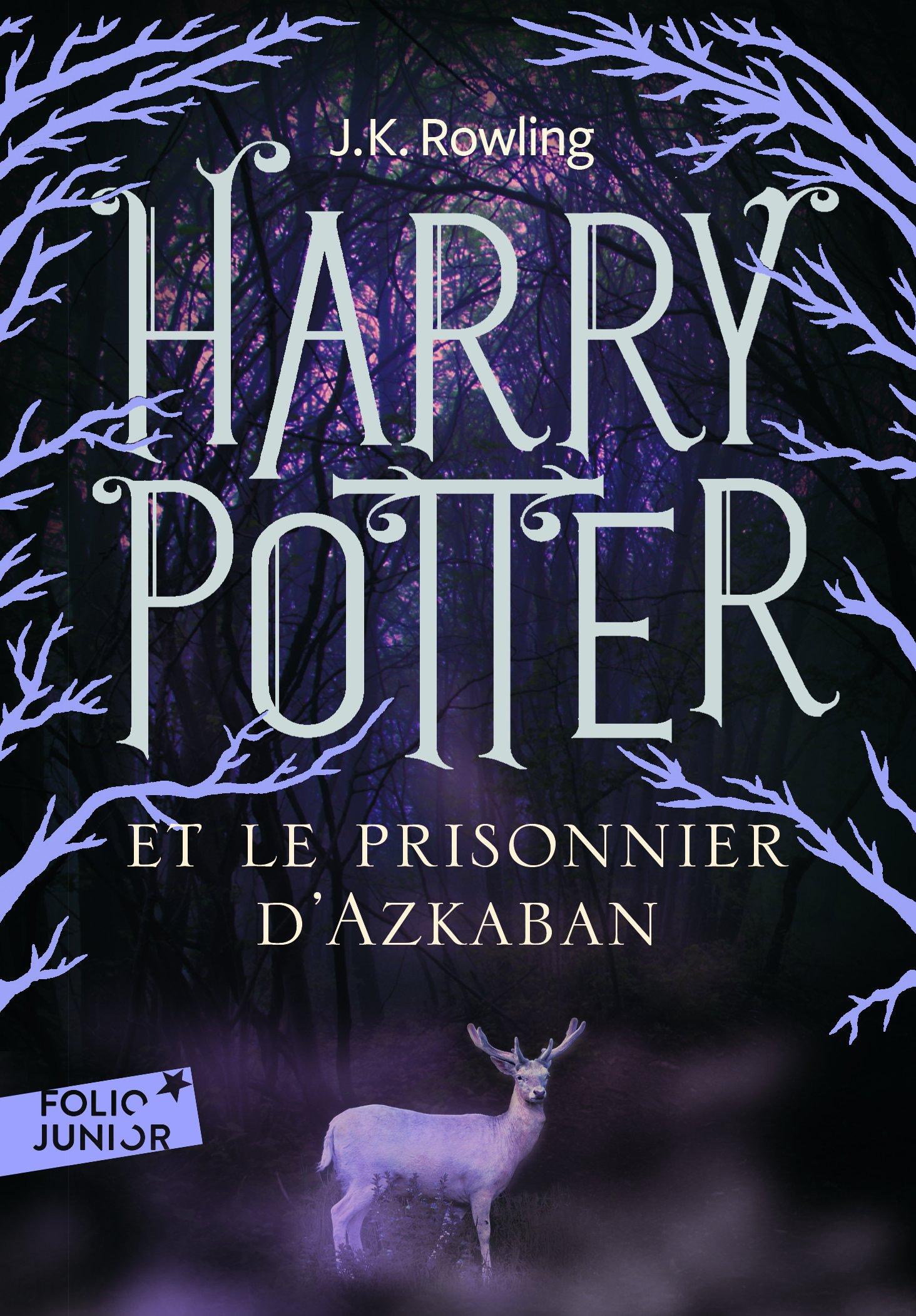 Harry Potter Et Le Prisonnier D Azkaban French Edition