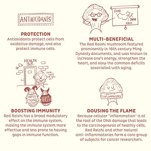 Amazon.com: KOS Organic Red Reishi Powder | Pure, Red Reishi (Ganoderma Lucidum) Mushroom Extract Powder | USDA Organic, Anti-Aging, Adaptogen, ...