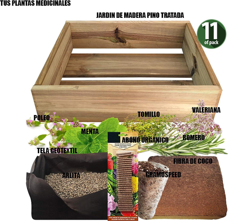 No Plan B for Earth Kit de Cultivo con Maceta de Pino Tratada. Semillas de Romero,TOMILLO, VALERIANA, POLEO Menta