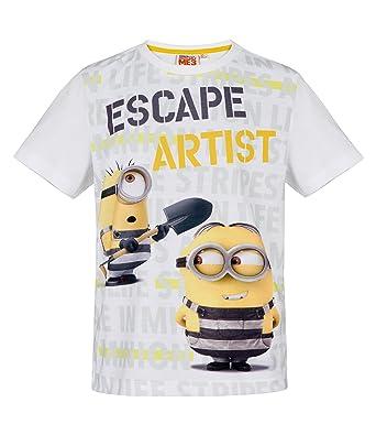 c539d67757527 MINIONS Despicable Me Garçon Tee-Shirt - Blanc  Amazon.fr  Vêtements ...