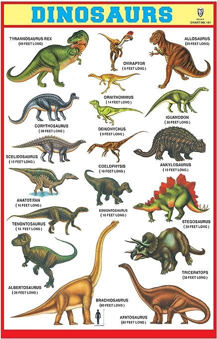 IBD Pre-Primary Children Educational Dinosaurs gumming Chart Pack of 10 pcs, color Dinosaurs Graphique (Cumming) 10 x 15 pouces: Amazon.es: Oficina y papelería