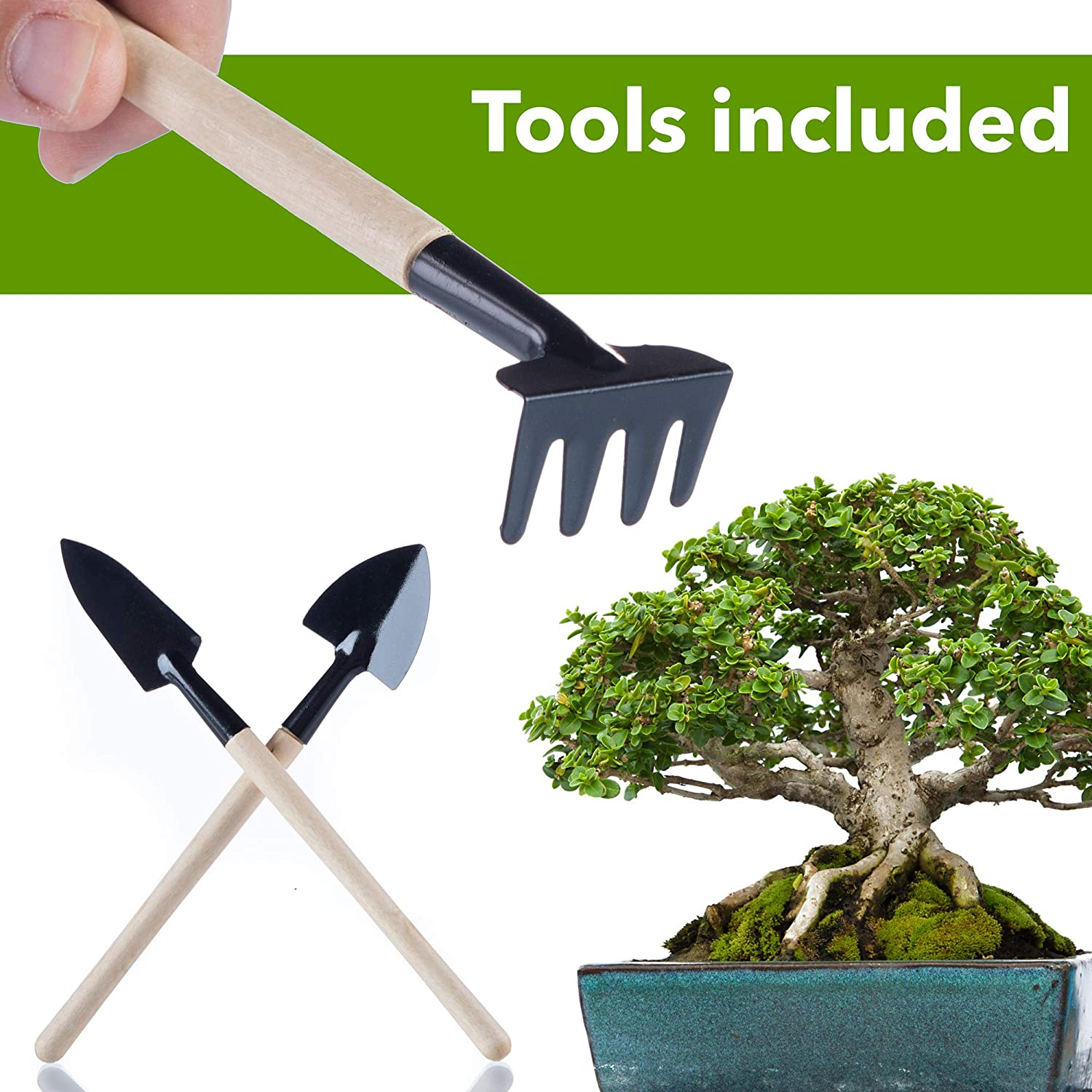 5 Rolls 144 Feet Plant Wire Bonsai Anodized Aluminum Black Green Rust Resistant and 3 Pcs Mini Wooden Garden Tools Rake Shovel Spade for Beginners and Professionals Bonsai Wire Premium Pack